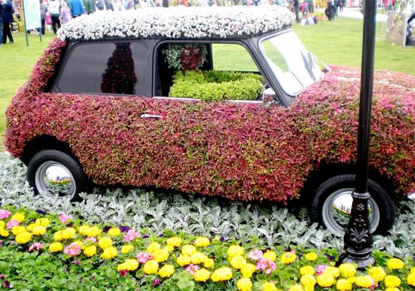 Auto Verdi - Fiori