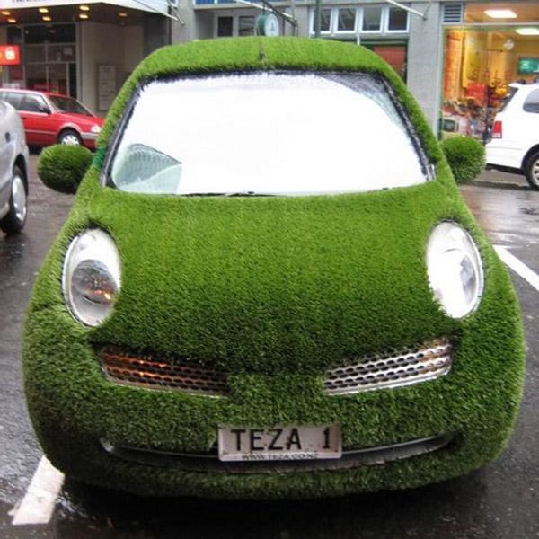 Auto Verdi - Prato