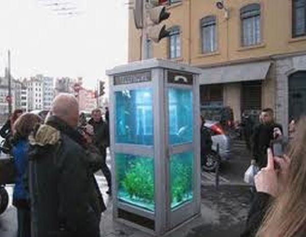 cabina-acquario Lione 1