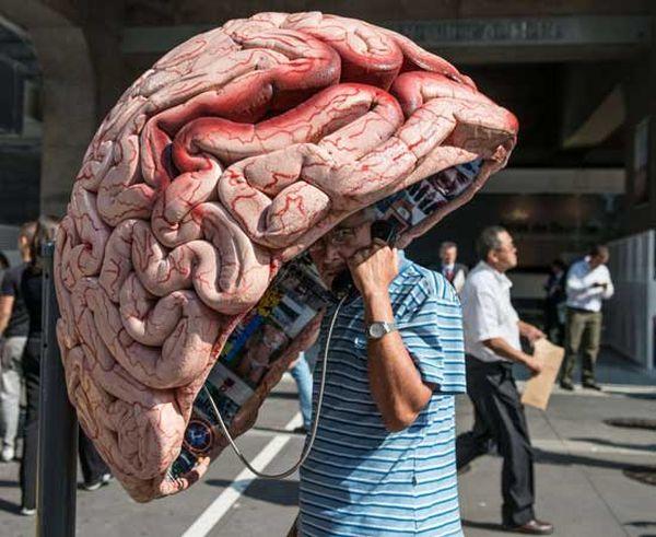cabina San Paolo: cervello