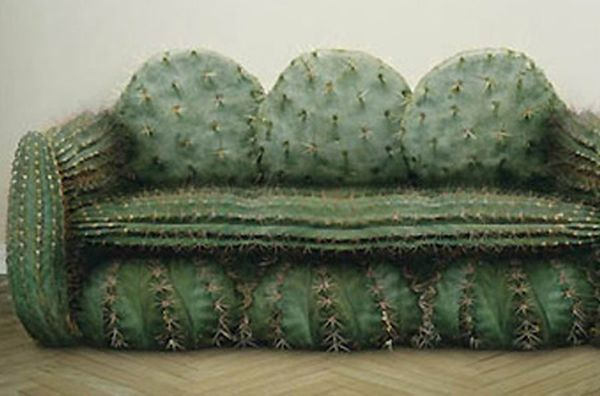 divano-cactus