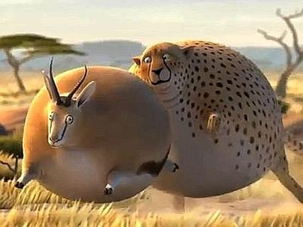 Animali obesi