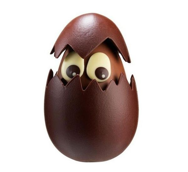 uovo-pulcino