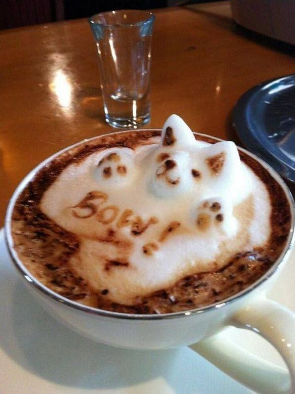 Cappuccino in 3D: 6