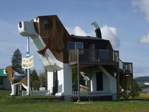 Dog Bark Park Inn 4