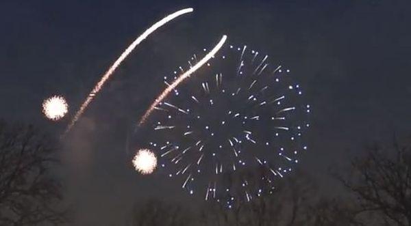 Fuochi artificio a forma di pene