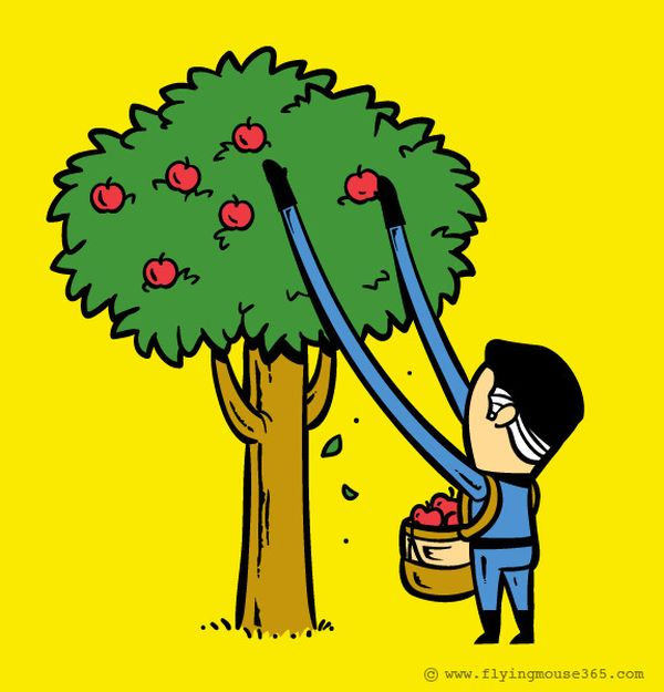 Mr Fantastic-raccoglitore di mele