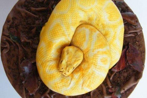 Torta a forma di serpente 2
