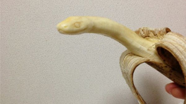 scultura-banana: serpente