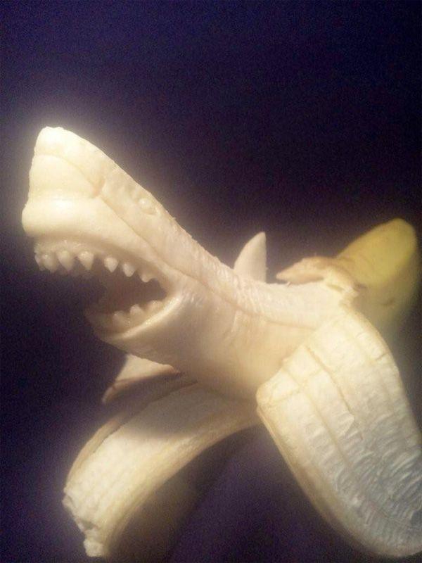 scultura-banana: squalo