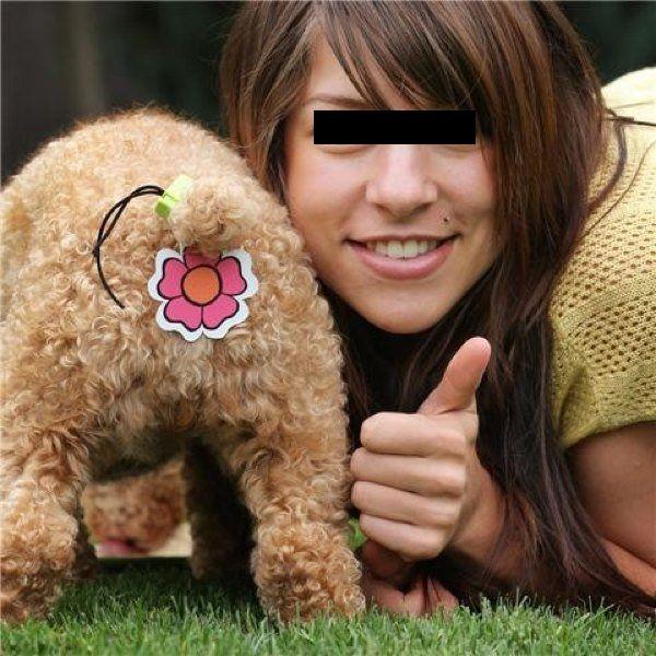 intimo per cani