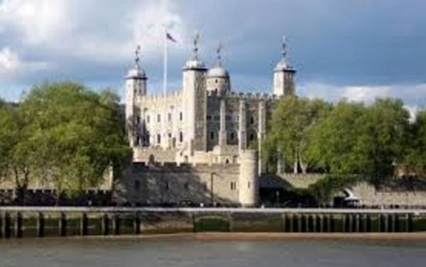 leoni bianchi nella torre di Londra