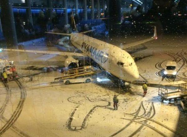 pene disegnato da staff Ryanair